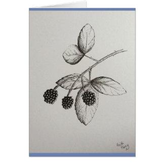 Rabbitswood Blackberries Illustration Card
