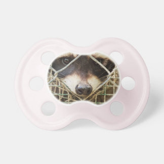 RACCON on BooginHead Pacifier