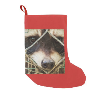raccon  on Christmas Stocking