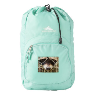 raccon  on   High Sierra Backpack, Aqua Blue Backpack