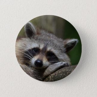 Raccoon 2 Inch Round Button