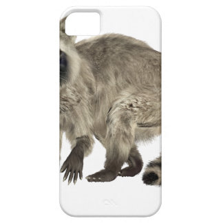 Raccoon at Attention iPhone 5 Covers