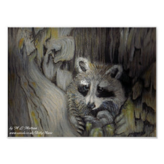 Raccoon at Home Poster