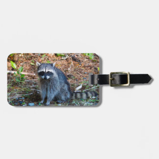 Raccoon at Point Defiance Park WA State Luggage Tag