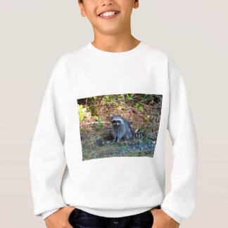 Raccoon at Point Defiance Park WA State Sweatshirt