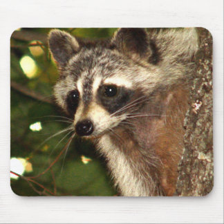 "Raccoon ""Bandit"" Mousepad"