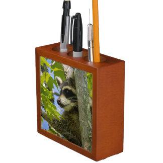 Raccoon Desk Organizer