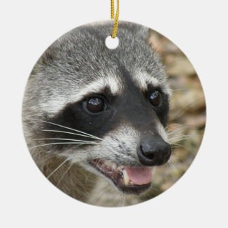 Raccoon Face Ornament