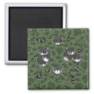 Raccoon Family in a Bush Square Magnet