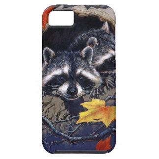 Raccoon Hideaway iPhone 5 Cover