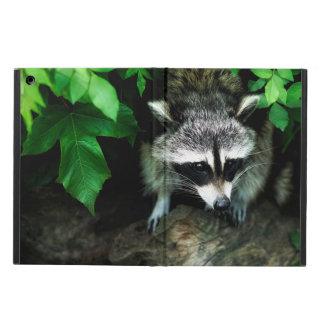 Raccoon In Forest Wildlife Nature, iPad Air Case