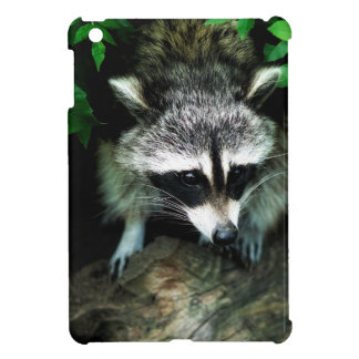 Raccoon In Forest Woods Nature iPad Mini Hard Case iPad Mini Cover
