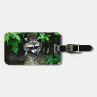 Raccoon In Forest Woods Nature Luggage ID Tag