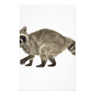 Raccoon In Side Profile Customized Stationery