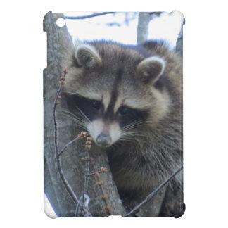 Raccoon iPad Mini Cases