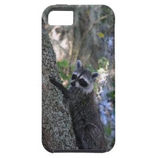 Raccoon iPhone 5 Covers