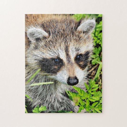 raccoon jigsaw puzzle