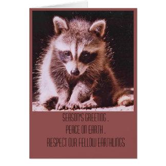 Raccoon Kit Christmas Greetings Card