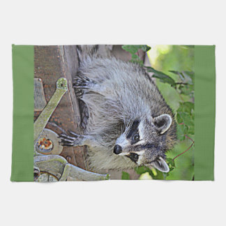 Raccoon Kitchen Towel