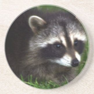 Raccoon Mask  Coaster