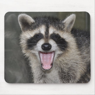 Raccoon Mousepad - #1025