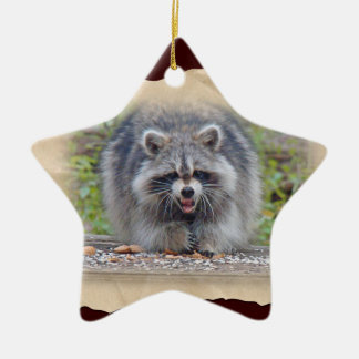 Raccoon - My bird seed! Ceramic Ornament