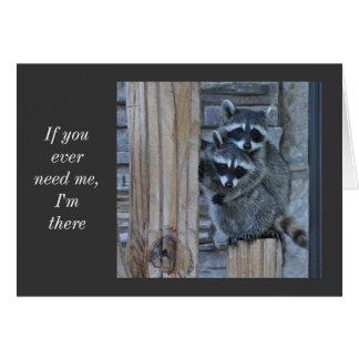 Raccoon Notecard