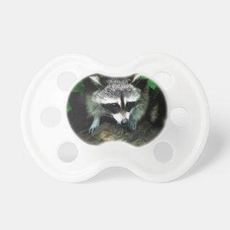 raccoon pacifier