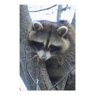 Raccoon Stationery Design
