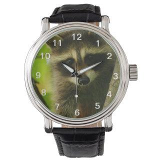 raccoon wristwatch