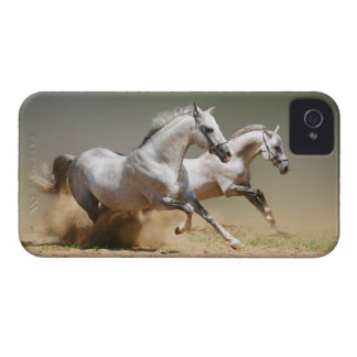 Race The Wind Horses Case-Mate iPhone 4 Cases