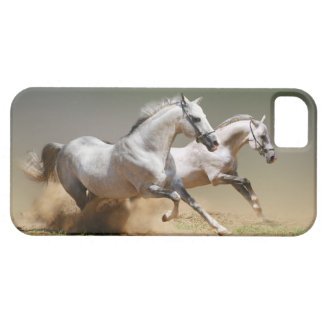 Race The Wind Horses iPhone 5 Case
