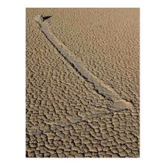 Racetrack Playa Sliding Stones Moving Rocks Postcard