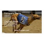 Racing Greyhound Dog Business Card