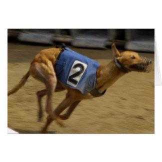 Racing Greyhound Greeting Card