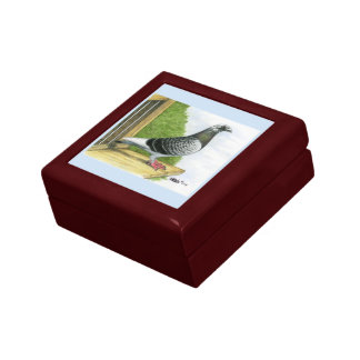 Racing Homer On the Landing Board Jewelry Boxes