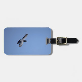 Racing Pigeon in Flight Luggage Tag