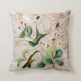 Racket Tail Hummingbird Vintage Grunge Pillow