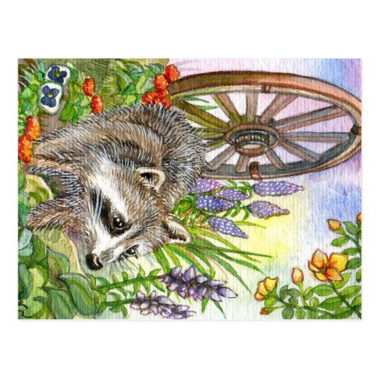 Racoon By Flower Garden Postcard