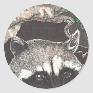 Racoon Classic Round Sticker