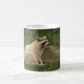 Racoon Mug