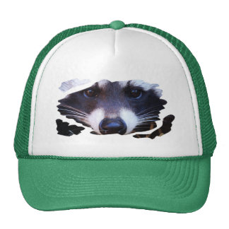 RACOON RACCOON - Photography Jean Louis Glineur Trucker Hat