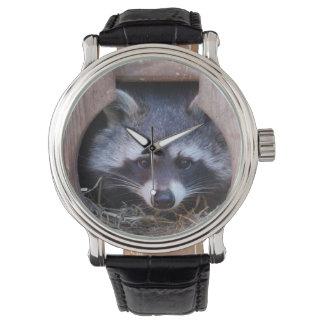 Racoon Watch ~ raccoon clock