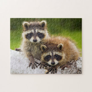 Racoons Jigsaw Puzzle