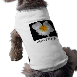 Radiance Delicate White Blossom Dog Tee Shirt