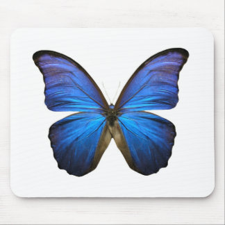 Radiant Blue Butterfly Mouse Pad