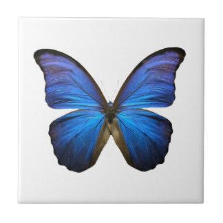 Radiant Blue Butterfly Tile