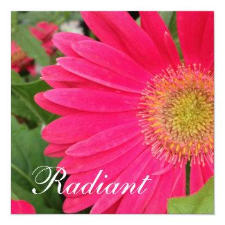 Radiant Card