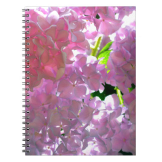 Radiant Pink hydrangeas Spiral Note Books