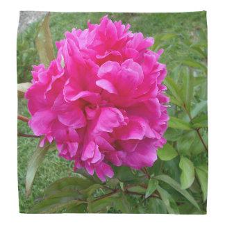 Radiant Pink Peony Do-rag